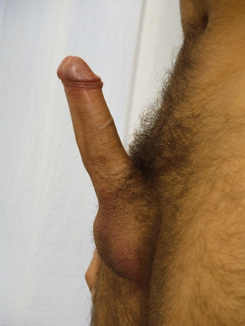 velludo