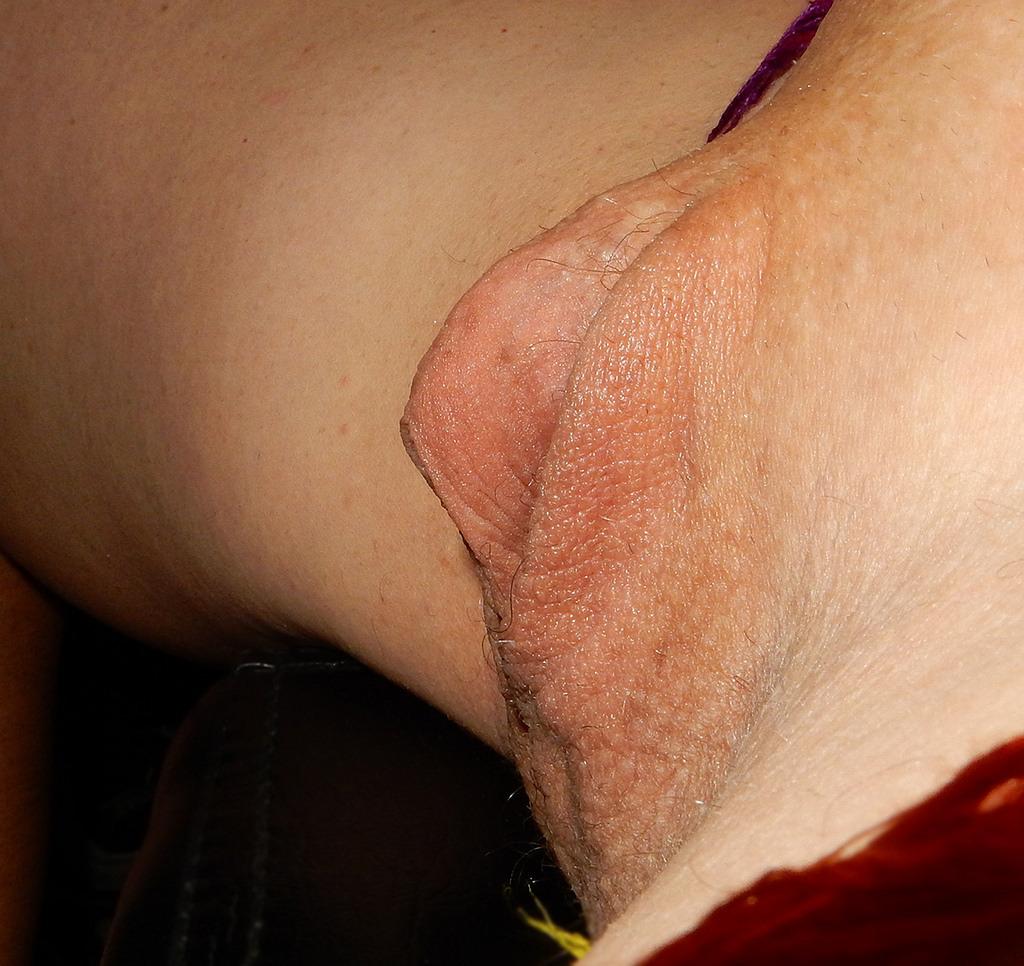 Clitoris - Videos de porno: Popular - Tonic Movies